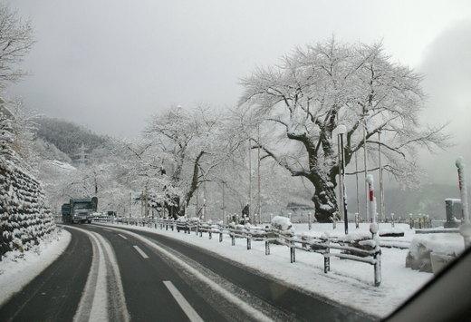 Sokawa_4266x