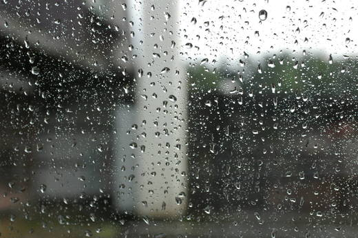 Rainwindw0541sx