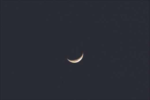 Luna_3166x