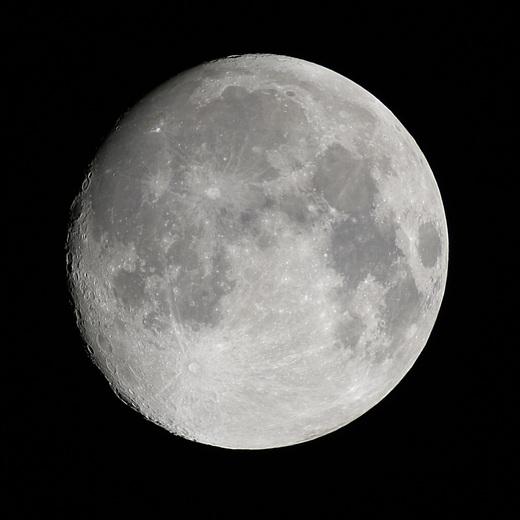 Luna1526c12e1024sqx