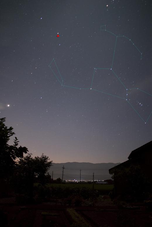 Orion3466pbuxt