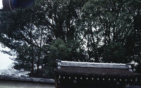 Kyoto1sv